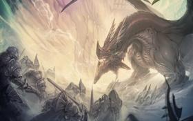 Обои дракон, доспехи, арт, мечи, воины
