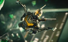 Обои полет, костюм, шлем, супергерой, комикс, Марвел, Ant-man