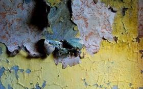 Обои стена, обои, текстура