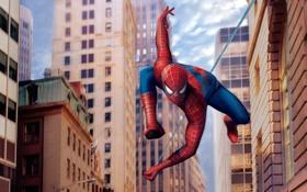 Обои кино, спайдермен, здания, паутина, паук, полёт, spiderman