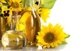 Картинка листья, подсолнухи, масло, белый фон, бутыли