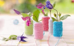 Обои цветы, нитки, декор, климатисы