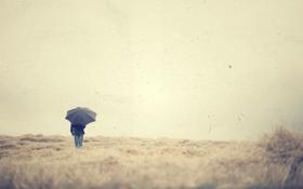 Обои поле, небо, зонт, мужчина