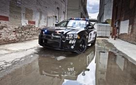 Обои авто, город, обои, полиция, лужа, додж, dodge