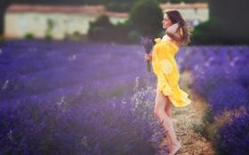 Картинка букет, лаванда, поле, девушка