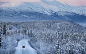 Картинка дорога, снег, Jaguar, Ягуар, лес.горы