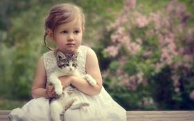 Обои портрет, девочка, котёнок