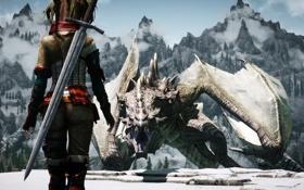 Обои холод, девушка, горы, оружие, дракон, спина, меч