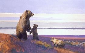 Картинка животные, картина, медведи, арт, медвежата, медведица, Bob Kuhn