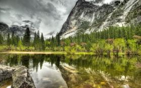 Обои лес, озеро, серый, гора, день