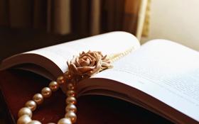 Картинка цветок, роза, бусы, книга, белые, бусины, пластилин