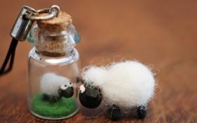 Обои toy, macro, sheep, bottle