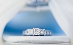 Обои обручальное, кольцо, камень