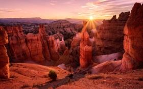 Картинка закат, природа, скалы, пустыня, каньон