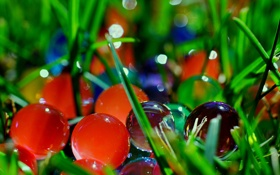 Обои зелень, стекло, шарики, макро, свет, блики, фото