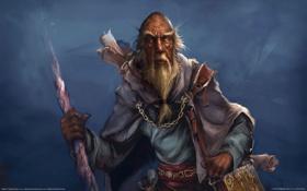 Обои Диабло, последний из Хорадрима, Deckard Cain, Blizzard Entertainment, Декард Каин, GameWallpapers, Diablo3