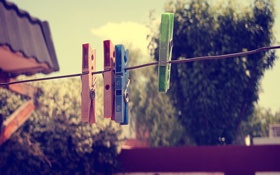 Обои фон, цветные, веревка, прищепки