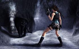 Картинка девушка, поза, оружие, пистолеты, шорты, хищник, майка