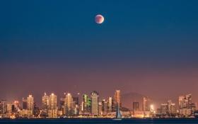 Обои Калифорния, небо, One America Plaza, Соединенные Штаты, луна, парусник, Сан-Диего