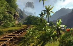 Обои солнце, тропики, пальмы, поворот, железная дорога, crysis
