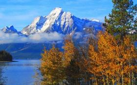 Обои осень, небо, деревья, горы, озеро, Вайоминг, США