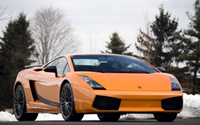Обои оранжевый, ели, суперкар, supercar, вид спереди, orange, ламборгини