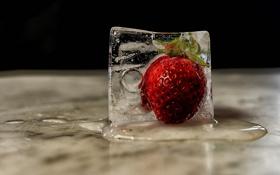 Картинка макро, лёд, ягода, Frozen, Strawberry