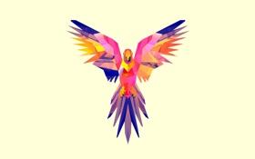 Обои арт, птица, крылья, минимализм