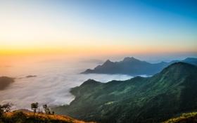 Обои пейзаж, небо, солнце, лес, горы, дымка, панорамма
