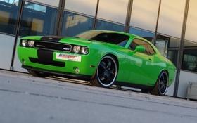 Обои машина, зелёный, Dodge, Додж Челленджер