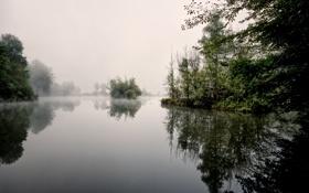 Картинка пейзаж, туман, озеро, утро