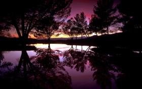 Картинка вода, деревья, закат, озеро, отражение, вечер, силуэты