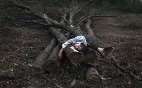 Картинка деревья, человек, ситуация