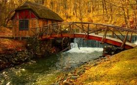 Картинка листья, осенью, мельница, деревья, природы, пейзаж, реки