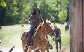 Картинка лошадь, зомби, сериал, The Walking Dead, Ходячие мертвецы, Michonne