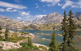 Картинка лес, горы, природа, озеро, USA, Bridger National Forest, Island Lake