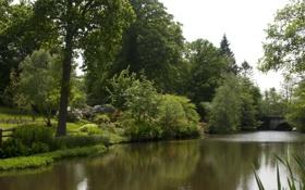 Картинка мост, природа, парк, река, фото