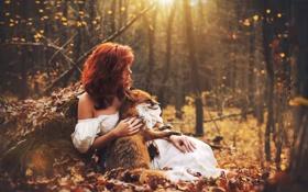 Обои лес, осень, лиса, Marketa Novak, Katka Kona, девушка