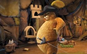 Обои мультфильм, толстый, кошак, шрек 4