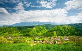 Картинка зелень, небо, трава, облака, деревья, пейзаж, горы