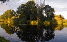 Картинка деревья, природа, река, зеркало
