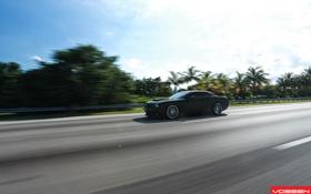 Обои дорога, машина, деревья, Dodge, SRT8, Challenger, CVT