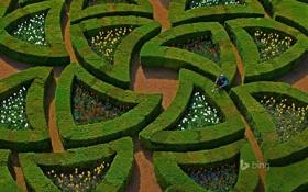 Обои парк, Франция, кусты, сады, Долина Луары, Шато-де-Вилландри