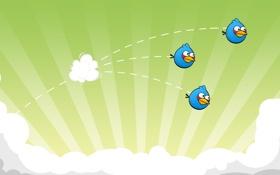 Картинка птички, полет, angry birds, игра, game, отряд