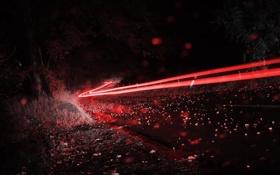 Обои дорога, ночь, огни
