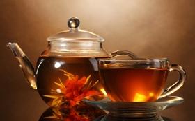 Картинка напиток, чай, заварник, кружка