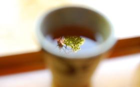 Обои Кружка, Листья, Чай