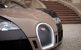 Картинка дом, фары, значок, veyron, перед, ступеньки, bugatti