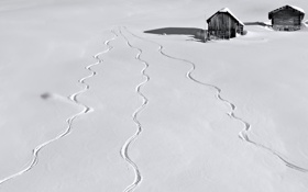 Обои зима, след, снег, дома