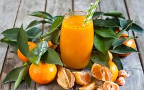 Обои мандарины, цитрусы, стакан, сок, фрукты, фреш